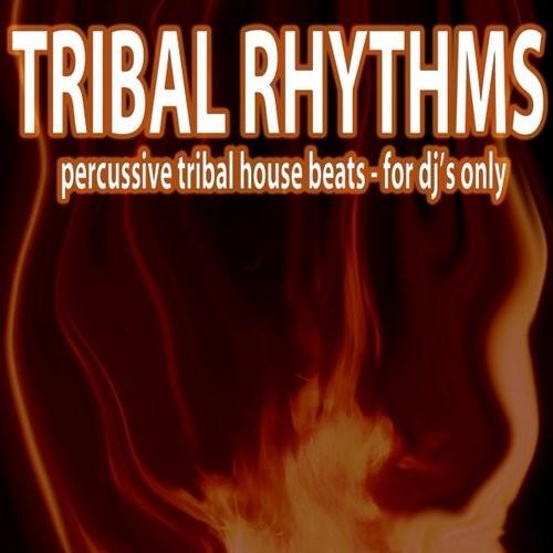 Tribal rhythms percussive tribal house beats 2016 23 for Tribal house tracks